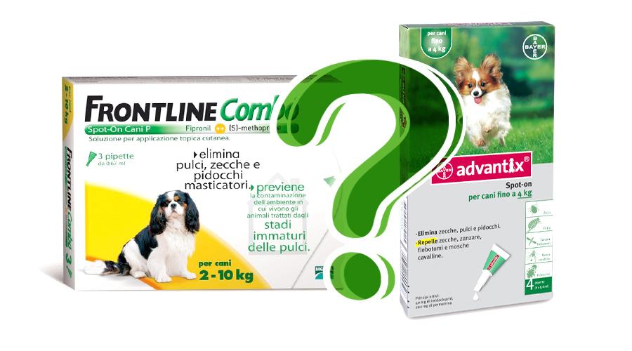 differenze-cane-tra-antiparassitari-frontline-combo-e-advantix