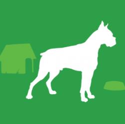 Gruppo FCI, cani molossoidi