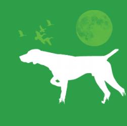 Gruppo FCI, cani segugio